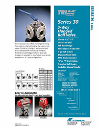 30 Series 3-Way Flanged Ball Valve Packages