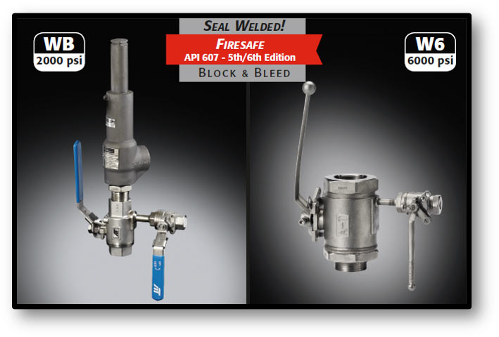 WB/W6 Series: Dual Valve Isolation
